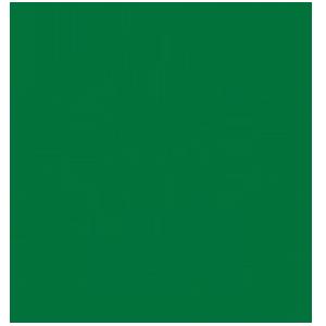 MFI PNG